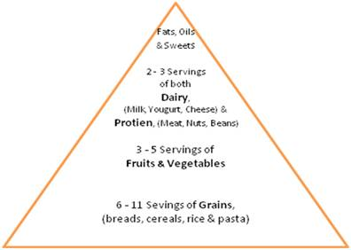 Anorexia charts food pyramid